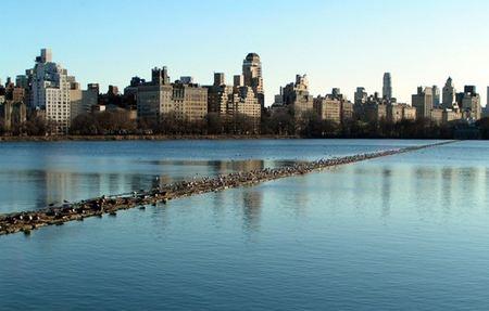 美国纽约中央公园区域的城市豪宅 万达公馆颠覆长沙豪宅市