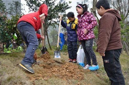(2012年,阳光100植树节活动)