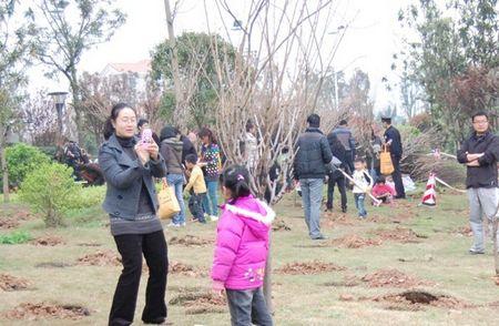 春天植树的水彩画; (图为:植树节现场客户植树及与小树留影)