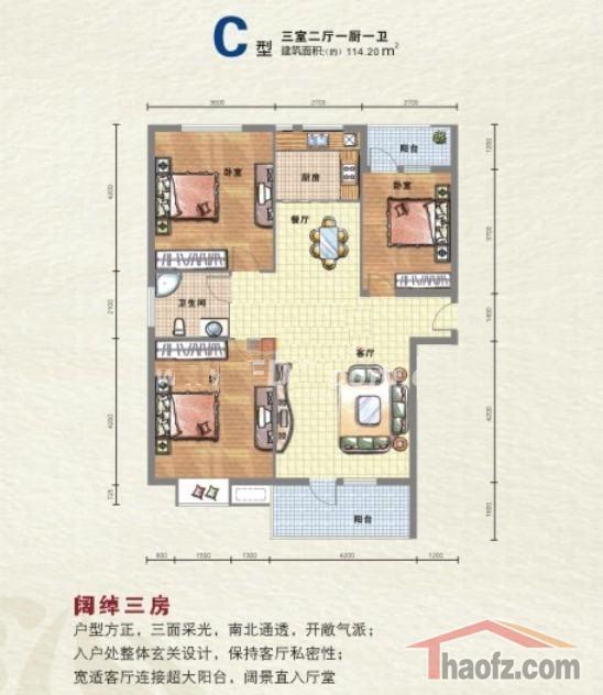滨湖国际户型图3户型三室两厅